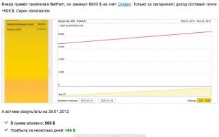 BetPamm - отзыв о компании